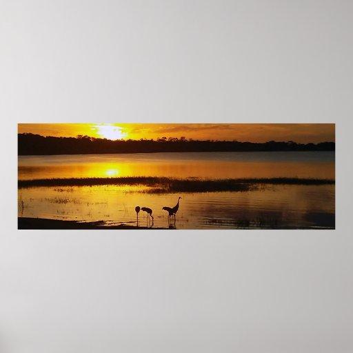 Florida Lake Dora Sunset with Sand Crane Birds Poster