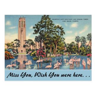 Florida, Lake Wales, Bok Singing Tower Postcard