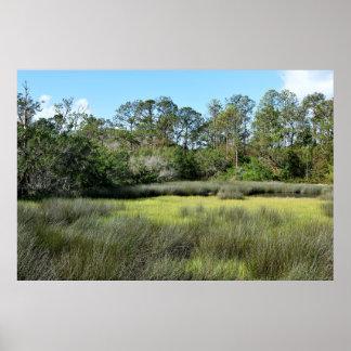 Florida Marshland Poster