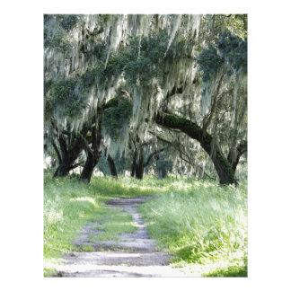 Florida Oak Letterhead Template