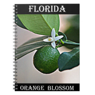 Florida Orange Blossom and small Orange Spiral Notebooks