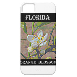 Florida Orange Blossom iPhone 5 Cover