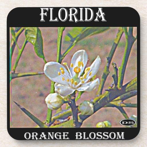 Florida Orange Blossom Coasters