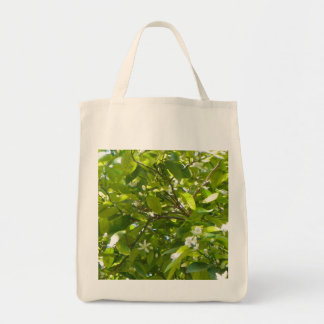 FLORIDA ORANGE BLOSSOMS Greeting Card Grocery Tote Bag