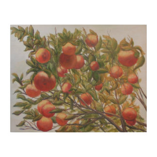 FLORIDA ORANGES Wood Wall Art