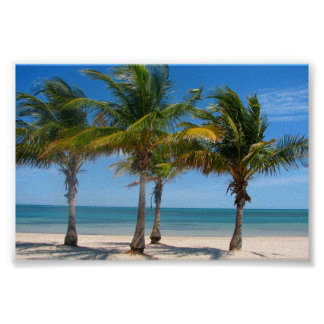 Florida palm trees print