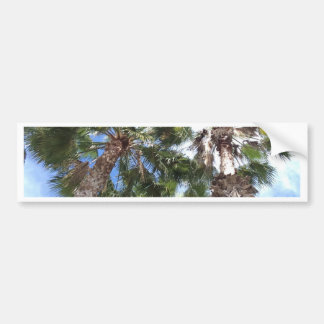 Florida Palms Bumper Sticker