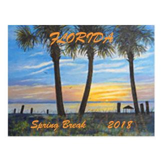 """FLORIDA PALMS SPRING BREAK POSTCARD 2018"""