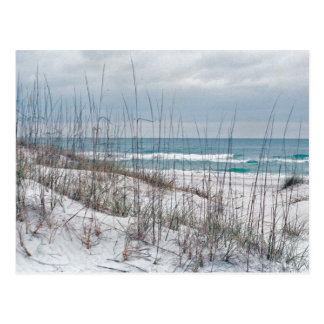 Florida Panhandle beach Postcard