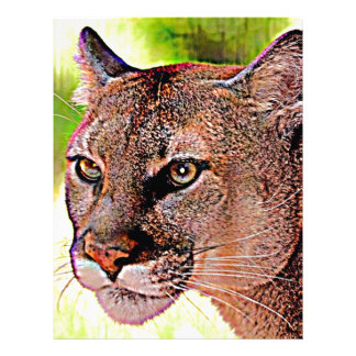 Florida Panther Custom Letterhead