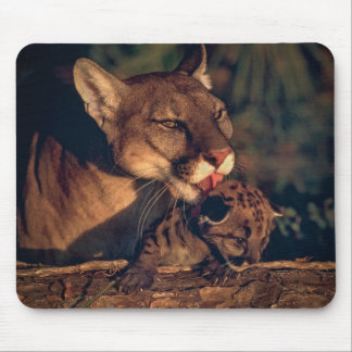 Florida Panther Licking Cub Mouse Pad