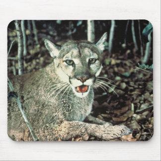 Florida Panther Mouse Pad