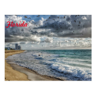 Florida Post Card South Florida Coastline