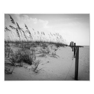 Florida Sand Dunes Art Photo