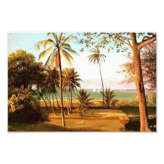 Florida Scene by Albert Bierstadt Photo