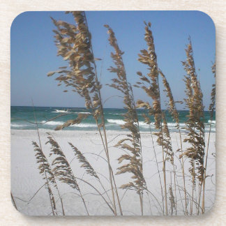 Florida Sea Oats Coasters