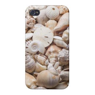 Florida Sea Shell Background - Beach Shells Custom iPhone 4 Case