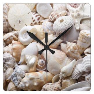 Florida Sea Shell Background - Beach Shells Custom Wall Clock