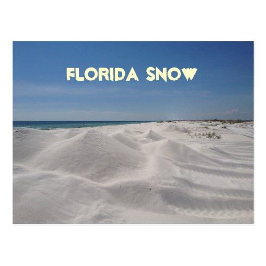 Florida Snow Postcard
