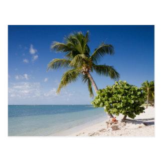 Florida - Sombrero beach postcard