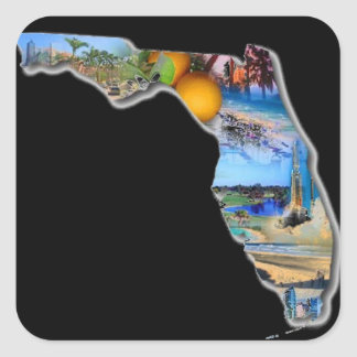FLORIDA SQUARE STICKER