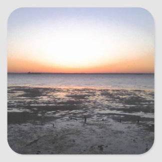 florida sun set square sticker