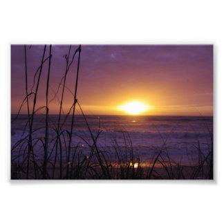 Florida Sunrise Photo Art
