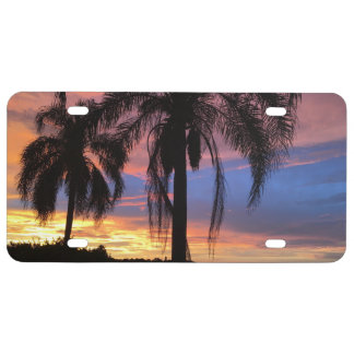 Florida Sunset License Plate