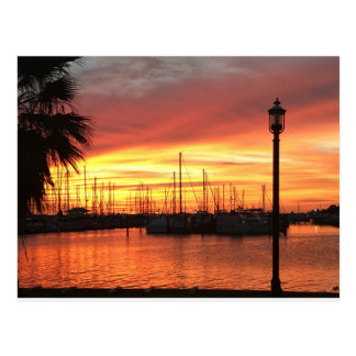 Florida Sunset Postcard