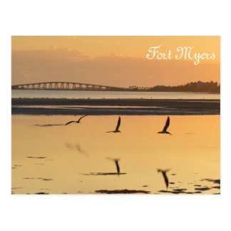 Florida Sunset Reflection Postcard