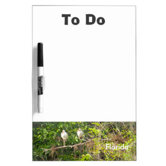 """Florida """"To Do"""" board"""
