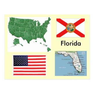 Florida, USA Postcard