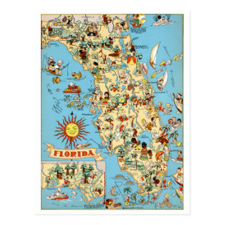 Florida Vintage Funny Postcard