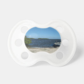 FLORIDA WATERS PACIFIER