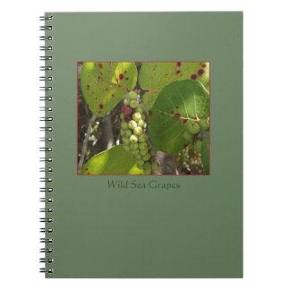 Florida Wild Sea Grapes Notebook