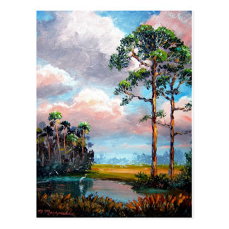 Florida Wilderness Postcard