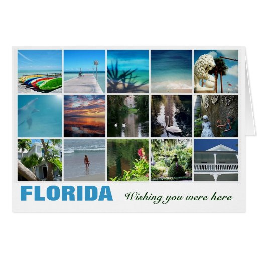Florida wishing you were here note card photograph