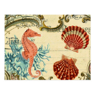 flourish french modern vintage seashell seahorse postcard