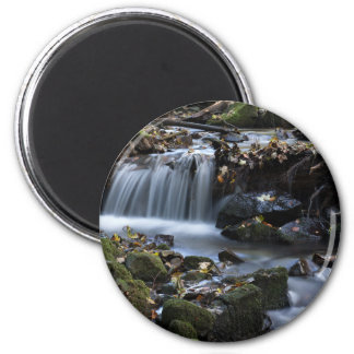 Flow Water through the jungle 2 Inch Round Magnet