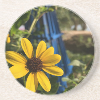 flower1.jpg drink coasters