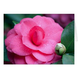 Flower #1657 card