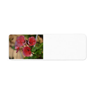 Flower address Labels
