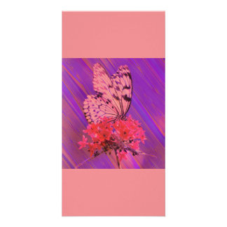 Flower and Butterfly in Pink and Purple Picture Card