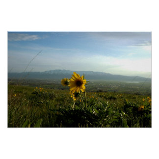 Flower and Wellsville mountain Range Poster