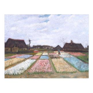 Flower Beds in Holland by Vincent van Gogh Postcard
