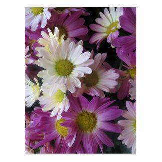 FLOWER Bouquet Butterfly Garden: Elegant Gifts Postcard