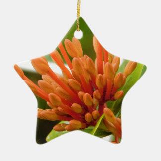 flower buds ceramic star ornament