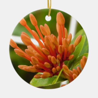 flower buds round ceramic ornament