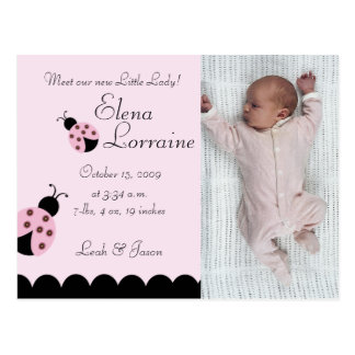 Flower Bug Lady Bug PHOTO Birth announcement Postcard