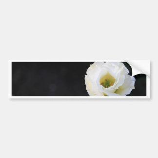 Flower Bumper Stickers